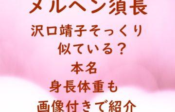 メルヘン須長 沢口靖子 そっくり 似ている 本名 身長 体重 画像 付き 紹介